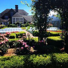 The Oregon Golf Club Wedding Venues Oregonoutdoor Venuesvineyard Weddingportland