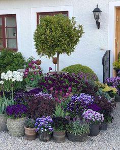 Container gardening is a fun way to add to the visual attraction of your home. You can use the terrific suggestions given here to start improving your garden or begin a new one today. Your garden is certain to bring you great satisfac Back Gardens, Small Gardens, Outdoor Gardens, Backyard Garden Design, Backyard Landscaping, Pot Jardin, Garden Cottage, Garden Planters, Garden Shrubs