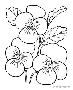Flower coloring pages - Printable coloring pictures of flowers - FREE; you also find it here together with more flower-printables: http://www.debtfreespending.com/flower-coloring-pages/