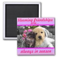 blooming friendships/pet magnet