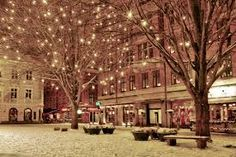Image result for pretty christmas trees tumblr