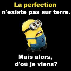 Perfection does not exist on earth. Emoticons Text, Funny Emoticons, Funny Texts, Funny Jokes, Hilarious, Minion Humour, Funny Minion, Citation Minion, Rage