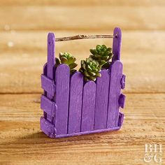 It's perfect for whatever miniature plants you have on hand.