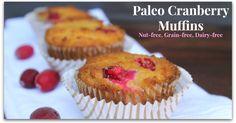 Cranberry Paleo Muffins