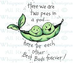 Two Peas in a Pod - Friendship - Rubber Stamps - Shop Phoenix Rising, Twin Tattoos, Tatoos, Adult Coloring, Coloring Pages, Twin First Birthday, Baby Clip Art, Pea Pods, Twin Babies