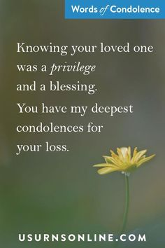"""Every life has value and yet some lives make a tremendous impact that can be felt long after they've left. Maybe saying something like, """"Knowing your loved was a privilege and a blessing. You have my deepest condolences for your loss."""" See more of our favorite condolence images and quotes at US Urns Online. #condolence Words Of Condolence, Never Say Goodbye, Sympathy Quotes, Funeral Arrangements, Grief Loss, Words Of Comfort, Losing Someone, Condolences, A Blessing"""