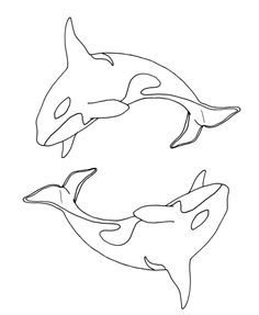 ying_yang_orca__lineart_by_cavelupa.jpg 900×1,097 pixels