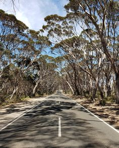 Stunning Kangaroo Island Australia roadway [OC] [4032x3024] Adelaide South Australia, Kangaroo Island, City Architecture, Roadtrip, Texture Painting, Island Life, Photography Photos, East Coast, Wearable Art