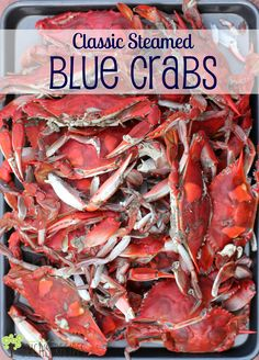 Only recently have I discovered how absolutely sweet and amazing Classic Steamed Blue Crabs really are.you have been replaced. Because blue crabs have my heart. Blue Crab Recipes, Cajun Recipes, Seafood Recipes, Cooking Recipes, Cooking Crab, Dinner Recipes, Meat Recipes, Salmon And Asparagus, Baked Salmon