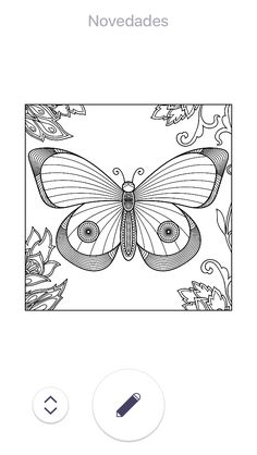 Insect Coloring Pages, Easy, Insects, Drawings