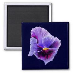 Give your refrigerator a personal touch with personalized Flower magnets from Zazzle! Shop from monogram, quote to photo magnets, or create your own magnet today! Candy Flowers, Photo Magnets, Design Show, Pansies, Birthday Cards, My Favorite Things, Purple, Artwork, Painting