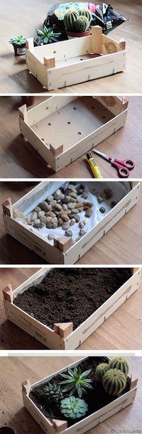 Nous sommes fans du minijardin récup' de la blogueuse La Mouette! en caso de cactus y carnosas con base de piedra y se cubre con nylon para conservar la humedad.