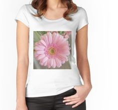 'Yellow Gerbera on a transparent background' Fitted Scoop T-Shirt by ellenhenry Pink Gerbera, Pink Carnations, White Cosmo, Pink Themes, Floral Photography, Bunch Of Flowers, Flower Quotes, Framed Art Prints, Pretty In Pink