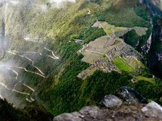 Almost to the top of Wayna Picchu. Looking down on Machu Picchu. Doesn't get better than this