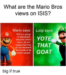 26 Best Mario And Luigi Memes Images Mario And Luigi Mario