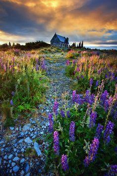 Fairyland (lake Tekapo, New Zealand) by Michaelthien