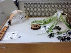 Spiders on the light table-also children drew their own paper webs .and books about spiders next to the light table. Preschool Lessons, Preschool Classroom, Kindergarten, Early Childhood Activities, Childhood Education, Library Activities, Stem Activities, Science Table, Sensory Lights