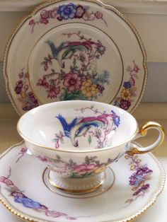 Pretty Phoenix Tea Cup & Snack Plate 1950s Vintage Teacup / Plate by Castleton, Colorful Pattern with Bird Inside Cup, Flowers