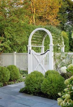 Fence   Gate   New Dawn vines climb over a wooden arbor, surrounded by Limelight hydrangea and Wintergreen boxwood plants.