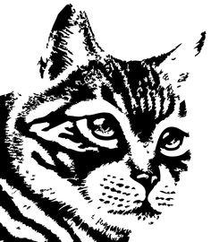 Animales Gato 415201 Png 645 738 Bulldog Frances Dibujo Dibujos Serigrafia