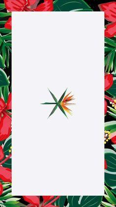 (144) #EXO - Tìm kiếm Twitter
