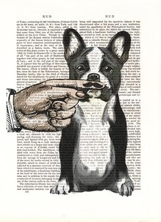 French Bulldog Finger Mustache Original Illustration Art Print Mixed Media Painting wall art wall decor Wall Hanging Digital Print Moustache/ Etsy!
