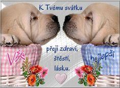 Labrador Retriever, Happy Birthday, Dogs, Quotes, Labrador Retrievers, Happy Aniversary, Qoutes, Happy Brithday, Dating