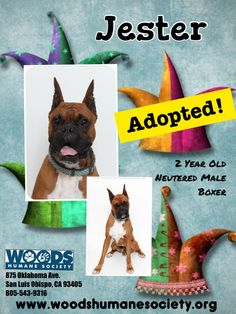 Adopted,