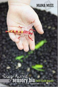 I love this idea!! Bug Hunt Sensory Bin for Preschoolers.   {Mama Miss}