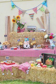 Resultado de imagen para cumpleaños infantil adornado de la granja de zenon
