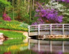Historic garden week in Virginia
