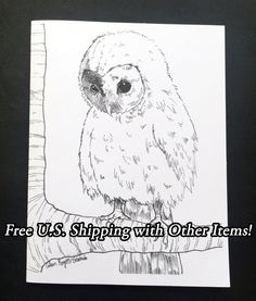 New to Atramentaria on Etsy: One (1) Original Barn Owl Art Greeting Card - Cute Realistic Baby Owl Illustration Blank Greeting Card - Black and White Ink Drawing (2.75 USD)