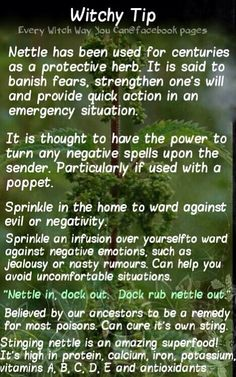 Every Witch Way You Can.For those interested in learning about the workings employed in basic craft work. Wiccan Witch, Magick Spells, Witchcraft, Wiccan Magic, Every Witch Way, Witch Herbs, Herbal Magic, Wiccan Crafts, Eclectic Witch