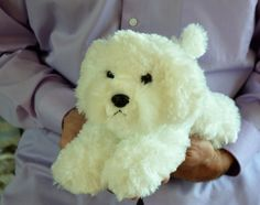 Bichon Puppy for People with Alzheimer's and Caregivers