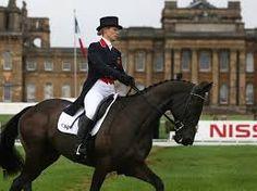 Image result for blenheim horse trials