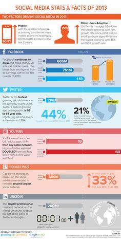 2013 social media stats