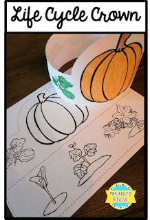 10 Life Cycle Of A Pumpkin Activities For Preschool Ideas In 2020 Pumpkin Life Cycle Pumpkin Activities Pumpkin Life Cycle Craft