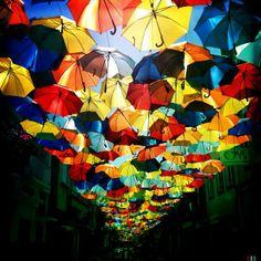 guada-chuva