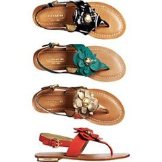 I love these Coach sandals.
