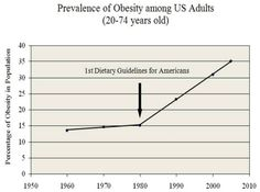 """""""What's Wrong with the U.S. Dietary Guidelines?"""" & Other Nutrition & Weight Loss Qs Answered by Adele Hite, RD, MPH (& PhD Candidate)"""