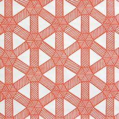 Meg Braff Designs - sasa tangerine on white