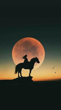--- Millennials, This particular Can be Just what exactly People Have to have In order to Realize Wi Beautiful Nature Wallpaper, Beautiful Moon, Beautiful Horses, Moon Photography, Horse Photography, Horse Wallpaper, Sunset Wallpaper, Pastel Wallpaper, Wallpaper Backgrounds