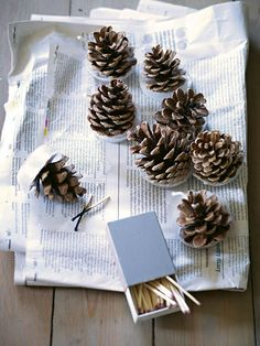 Pinecone fire starters.