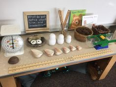 My classroom environment is truly a labor of love for my kids. I love how the amazing and inspiring Opal School in Oregon describes their e. Kindergarten Classroom Setup, Reggio Emilia Classroom, Reggio Inspired Classrooms, Reggio Classroom, Classroom Layout, New Classroom, Classroom Design, Kindergarten Inquiry, Nature Based Preschool