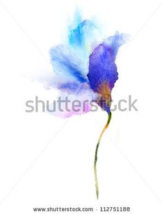 watercolour flowers - Google Search