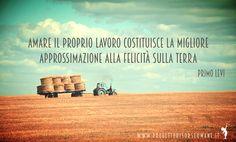 """""""Amare il proprio lavoro costituisce la migliore approssimazione alla felicità sulla terra"""" # PrimoLevi #felicità #lavoro #progettorisorseumane"""
