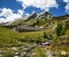 Escursione ad anello passando per i laghetti di Muino con partenza ed arrivo da Arvogno in valle Vigezzo: Bellissima