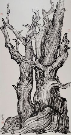 Tree Drawings Pencil, Ink Pen Drawings, Forest Sketch, Black And White Art Drawing, Tree Sketches, Pen Art, Watercolor And Ink, Graphic Design Illustration, Art Techniques