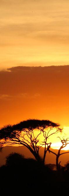 Jetsetter Photo of the Week-Kenya