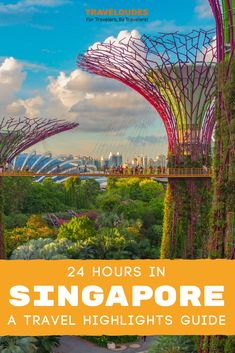 This Singapore travel guide was written by a local so you KNOW it's got all the best stuff! Click through for tips on where to go, what to do, what to eat, cheap travel tips, and cultural advice! Best Places To Travel, Best Cities, Cool Places To Visit, Singapore Travel Tips, Visit Singapore, Wanderlust Singapore, Abu Dhabi, Bangkok, Dubai